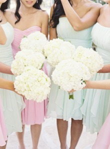 Classically Carolina: Hydrangeas - Wedding Bells