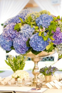 Classically Carolina: Hydrangeas - Wedding Belles