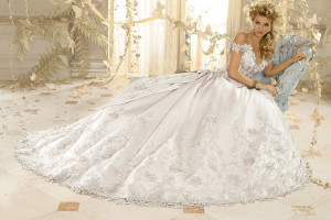Anjolique Bridal - Cornelius, NC - Fairly Southern