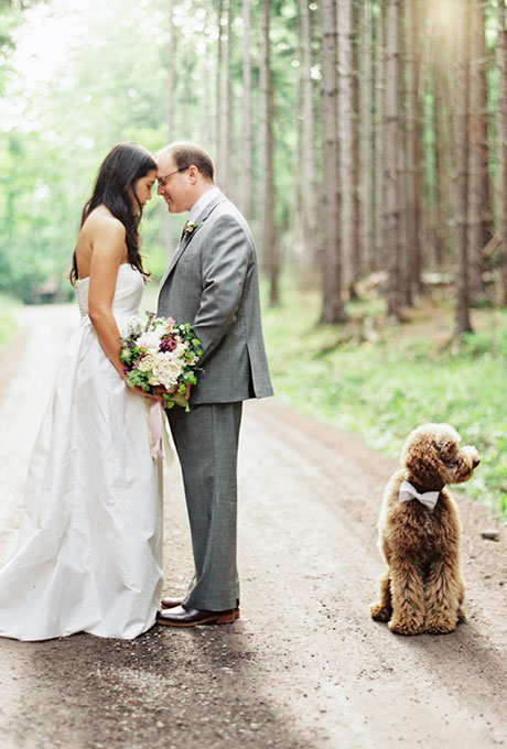 Dog in Bow Tie at Wedding - Wedding Belles Blog