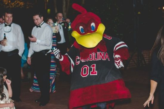 Cocky the Gamecock dances with wedding guests - Wedding Belles Blog