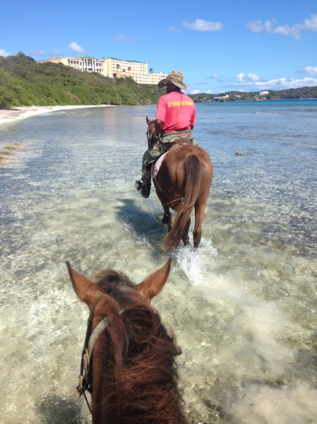 Horseback riding on the beach in St. Thomas, US Virgin Islands | Trés Belle